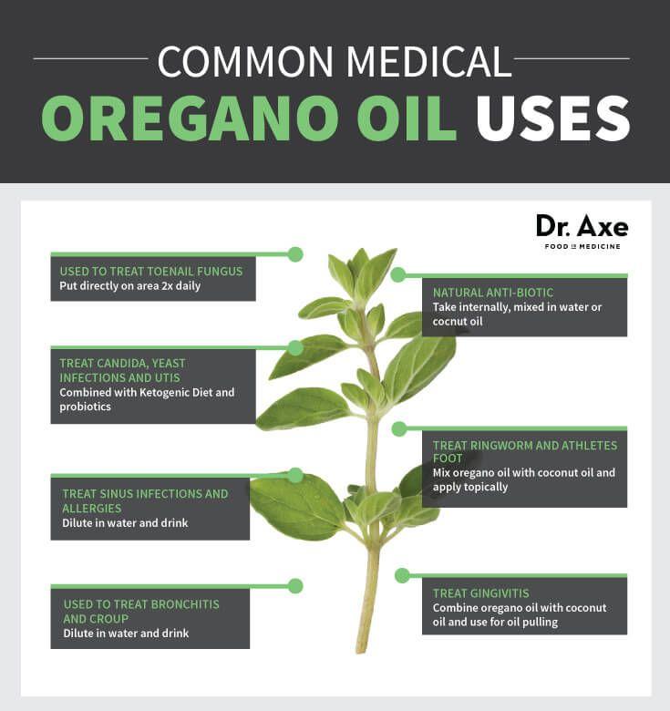 Oregano Oil Health Uses Chart Natural Medicine http://www.draxe.com #health #natural #holistic