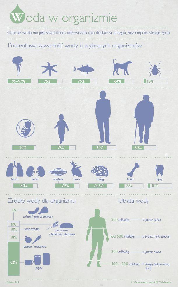 Nie dopuszczaj do odwodnienia organizmu - Infografika - WP.Pl