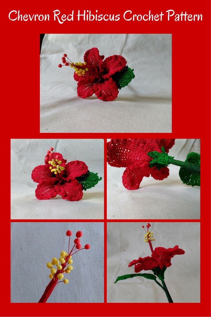 Free Crochet Pattern For Hibiscus Flower : 1000+ images about Flowers & Foliage Crochet on Pinterest ...