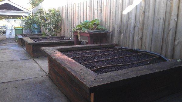 Ironbark veggie beds along side of house designed & built by Yummy Gardens, Melbourne