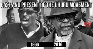 uhuru solidarity movement Chairman Omali Yeshitela