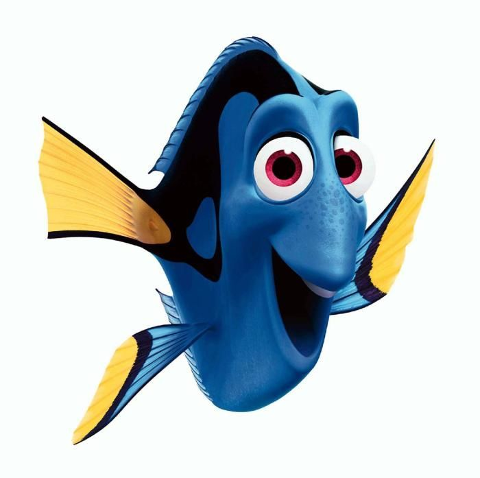 Dory is a character in Finding Nemo. She is a blue tang.