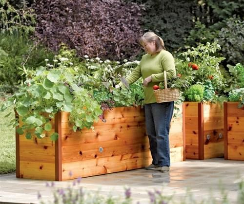 Cheap Raised Garden Beds | Affordable and Contemporary Garden with Raised Garden Bed Inspiration ...