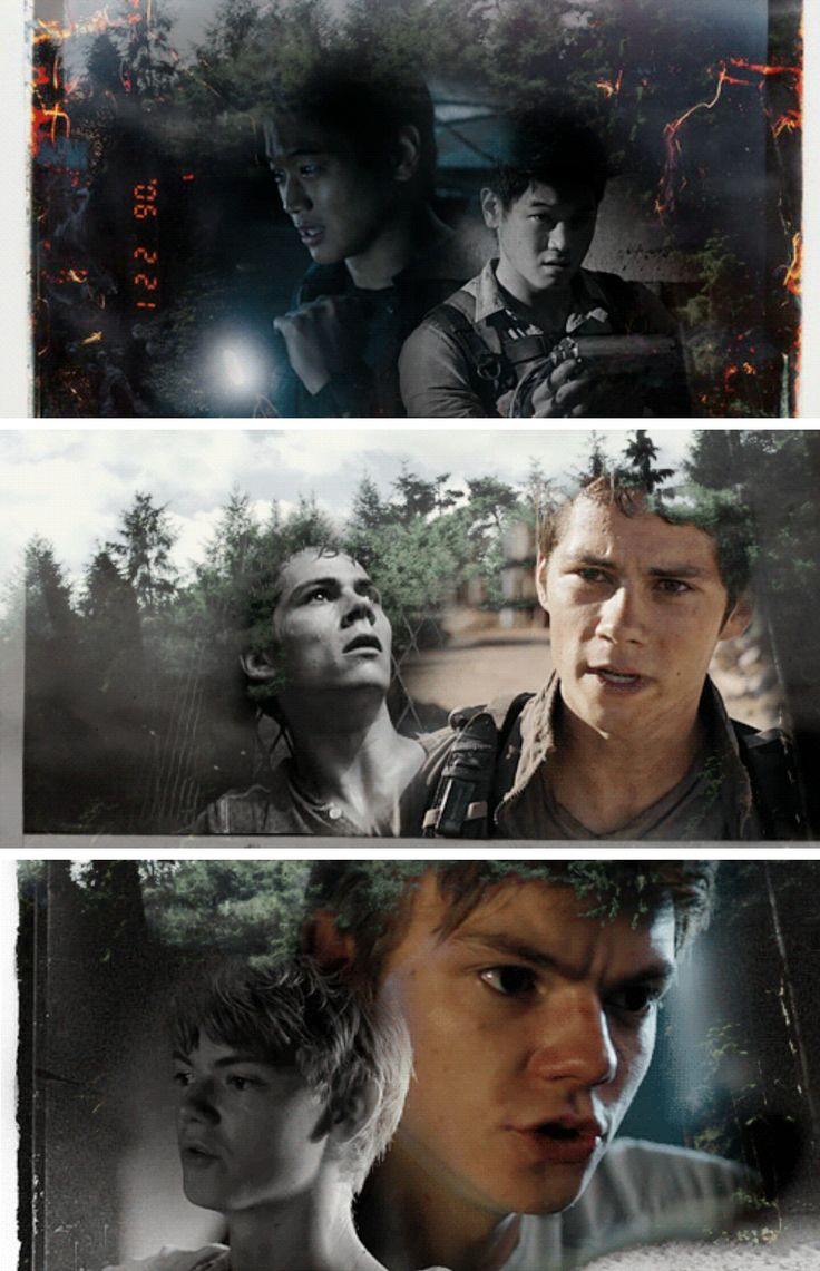 The Maze Runner  The Scorh Trials  Thomas, Minho, Newt