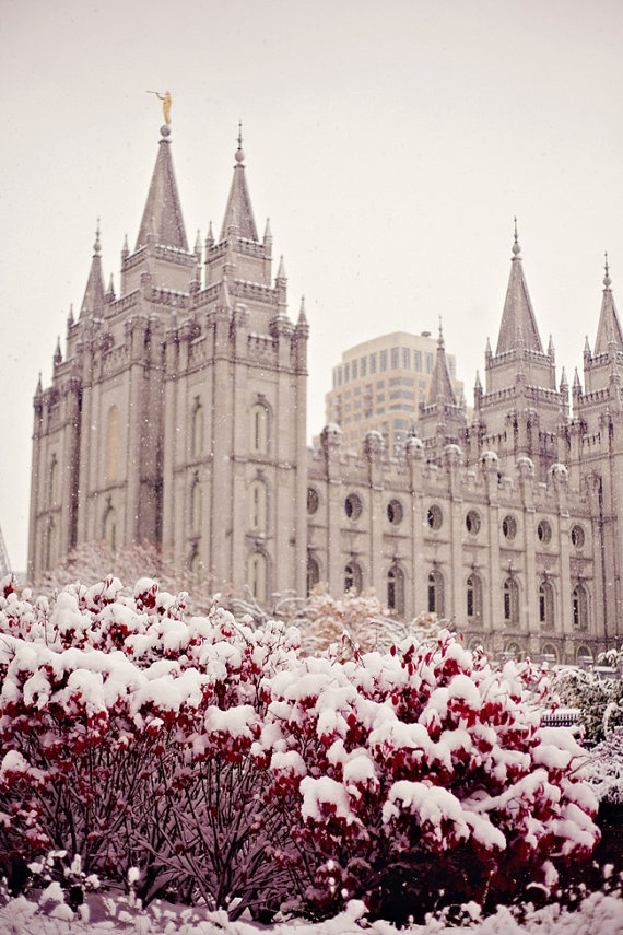 i love to see the temple :)