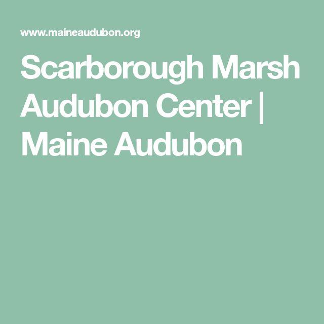 Scarborough Marsh Audubon Center | Maine Audubon