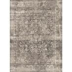 Concept Beige 5 ft. 3 in. x 7 ft. 3 in. Transitional Area Rug, Brown