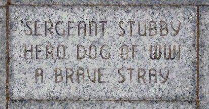 stubby the war dog - Google Search