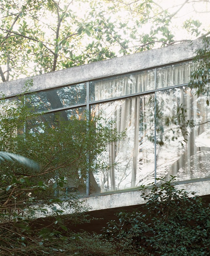 Glass House - Lina Bo Bardi