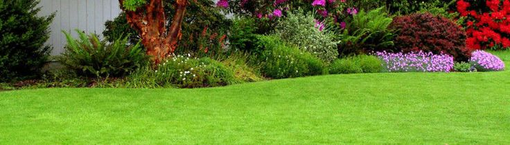 AFRICAN INSTANT LAWN- where quality and value mean something.African instant lawn-Is one of the leadinglandscaping companies in South Africa. We offer custom designed ,baked byexcellent plant knowledge.SERVICES: ·Landscaping installation·Garden services·Irrigation·Tree Felling·Lawn careWe believe that green has had a survivalist effect to oursubconscious minds, meaning the more green around you, the safer you feel. Please call Owen NOW for excellent…