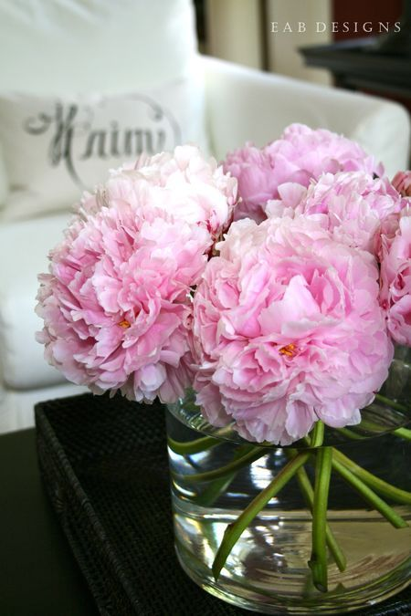 The beauty of #spring! www.digiwriting.com - Peony Season