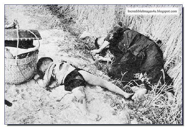 My Lai Massacre. Conversations. Hearing.