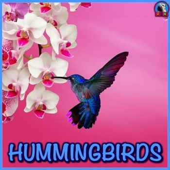 Hummingbirds PowerPoint and Activities:Learn all about hummingbirds in this PPT presentation. This nonfiction resource about hummingbirds is full of information, photos, illustrations, videos, and fun facts. Its designed for teachers, students, and parents! When it's over, challenge the kids with some higher level thinking activities designed to hone problem solving skills. by Nygren Educational Resources (photo by Iva Castro @ https://pixabay.com/en/white-orchid-orchid-pink-914977/ ). If…