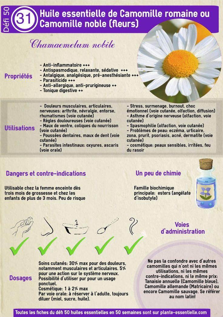 """Recherches utilisées pour trouver cet article:recette huile magique pour convaincre facilement, est ce que je peux mettre quelque goutte huile essentielle de basilic sur un mouchoir en papier pres de moi en me couchant, est ce que l huiles essentielles de thym fait fuire les psoques, huile essentielle coup de peps, huile essentielle qui sent … … <a href=""""http://plante-essentielle.com/temoignages-sur-les-huiles-essentielles/"""">Lire la suite <span class=""""meta-nav"""">→</span></a>..."""