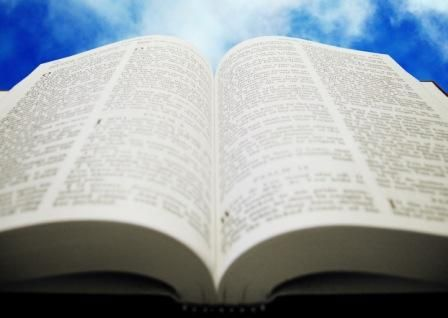 God's word and purpose for my life