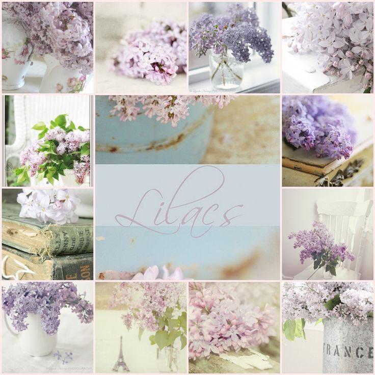 Lilac home decor idea Home Decorations Pinterest