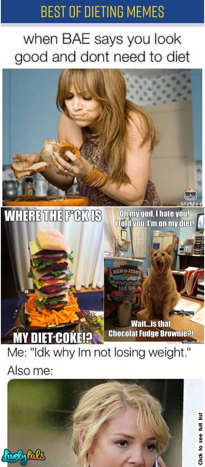 35 Extremely Hilarious And Relatable Dieting Memes Dieting Memes Reality Bites Selfcontrol Bestofdieting Livelypals Relatable Diet Meme Memes