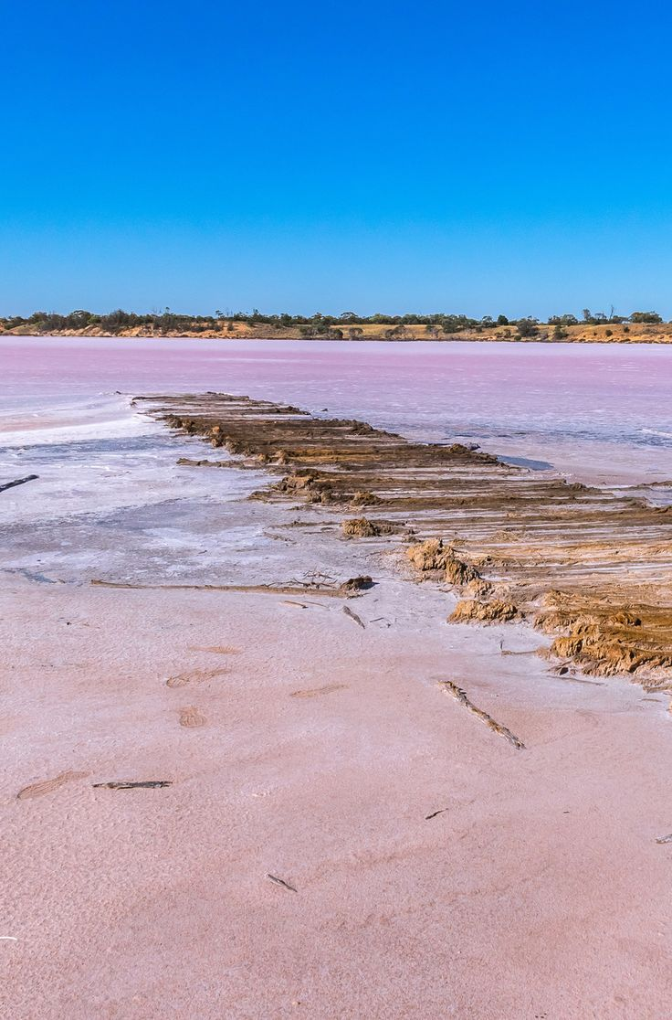 The pink lakes of Murray Sunset National Park are inspiring. Endless blue skies and bright pink waters; this is one phenomenon you have to see to believe.  #Australia
