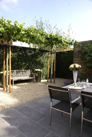 Onderhoudsvriendelijke tuin - wintergroene tuin met mooie planten van Ivens…