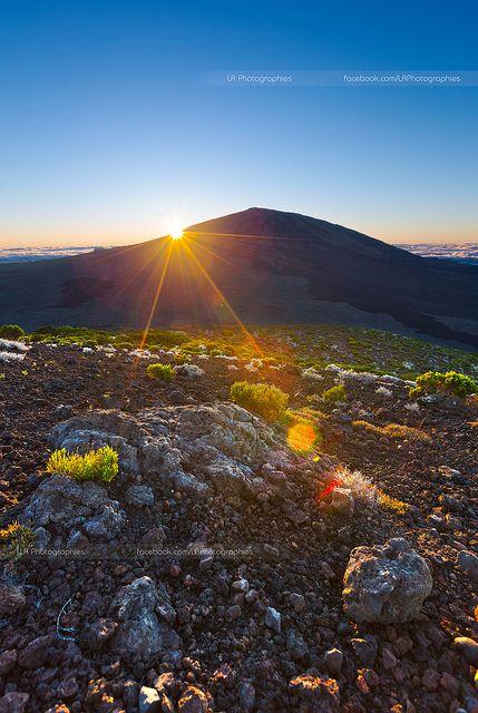 Un rayon de soleil !! - Ile de la Réunion | Flickr : partage de photos !