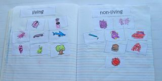 great lesson on living/nonliving: Living Nonliving, Nonliving Sorting, Journals Ideas, Minis United, Living And Nonliving, Science Notebooks, Science Journals, Kindergartenkindergarten, Kindergarten Kindergarten