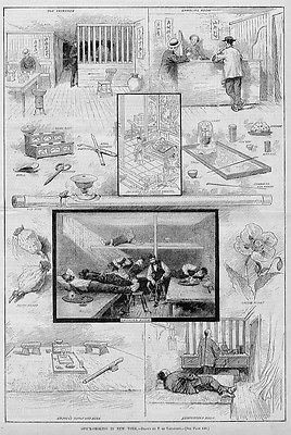 OPIUM SMOKING PIPE BOWL GAMBLING ROOM, CHINESE OPIUM PLANT, NEW YORK  HISTORY