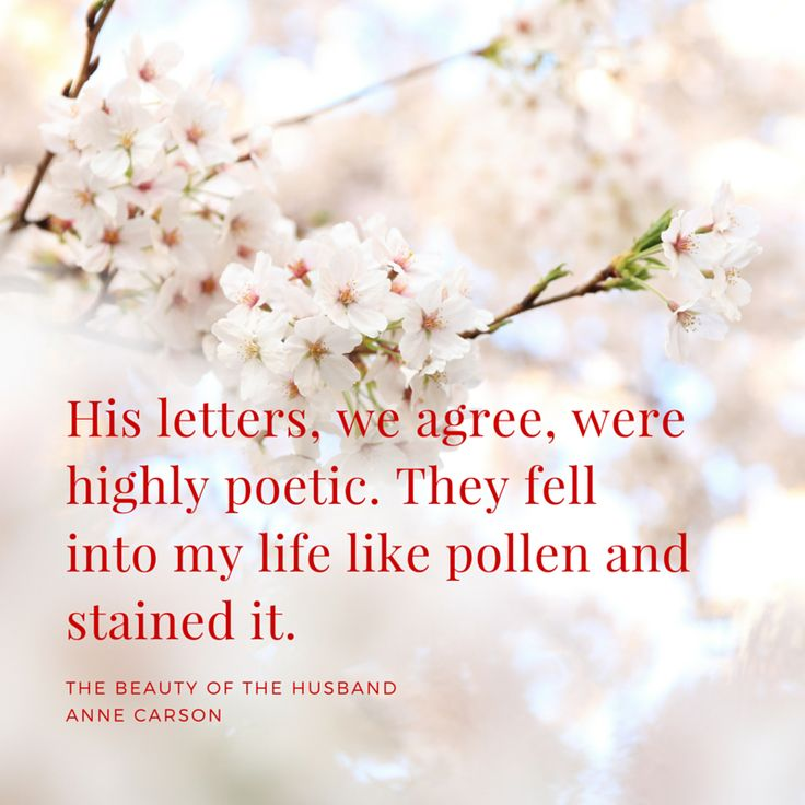 #AnneCarson #TheBeautyoftheHusband #Quotes
