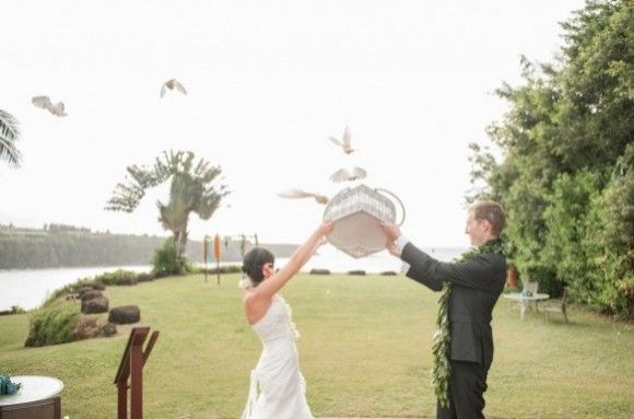 Maui Wedding Dove Release