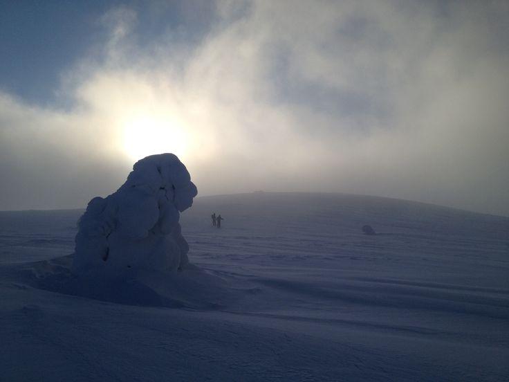 Skitouring in Pallas-Ylläs Nationalpark. Kesänkitunturi.