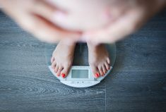 Pregnant woman weighing herself on a bathroom scale stock photo