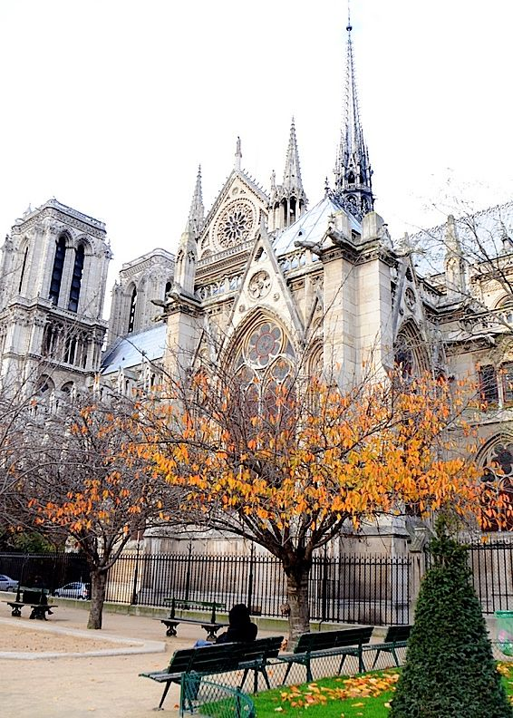 Notre Dame- Been there and climbed every step of it!