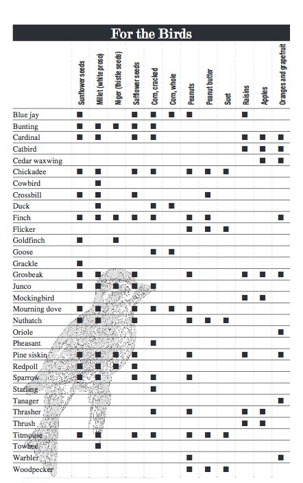 Wild Bird Food Preferences What Do You Feed Wild Birds?  What do you feed the birds? Our handy wild bird food chart lists the type of seeds, nuts, and other foods are liked most by different types of birds.
