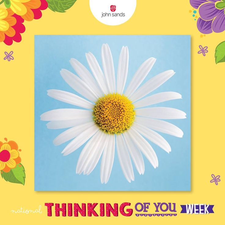 National Thinking of You Week is almost over but you have until 23.59 tonight to enter our competition with a creative image of the card you bought and the receipt, upload it here: http://spr.ly/6188Bsl6M and win a YEARS' WORTH OF GREETINGS CARDS! T's and c's in our 'Notes' section.