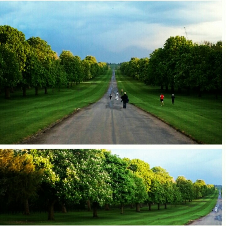 Beautiful Park on Windsor grounds, UK