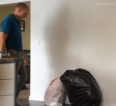 New trending GIF on Giphy. prank april fools day trashbag. Follow Me CooliPhone6Case on Twitter Facebook Google Instagram LinkedIn Blogger Tumblr Youtube