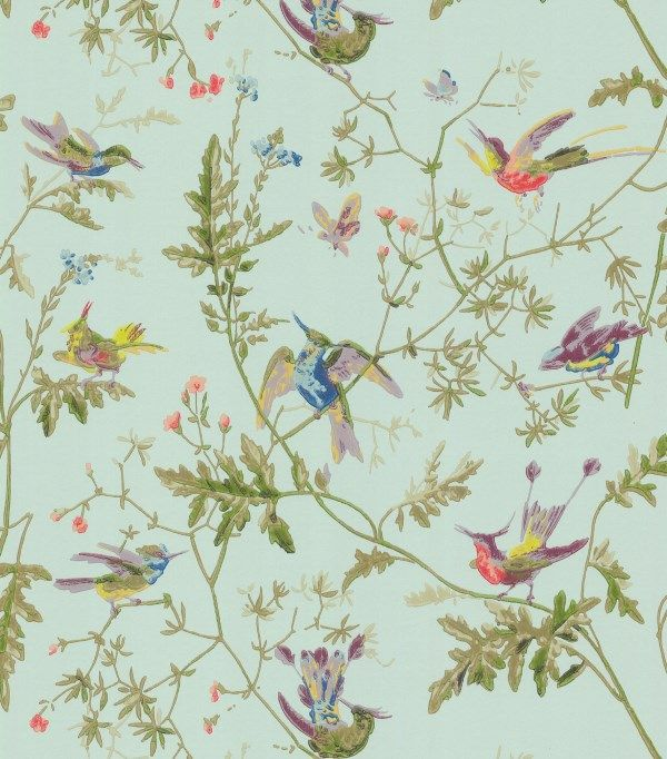 Humming Birds - 62-1004 - Cole & Son.nl
