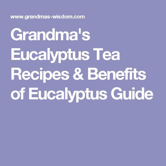 Grandma's Eucalyptus Tea Recipes & Benefits of Eucalyptus Guide