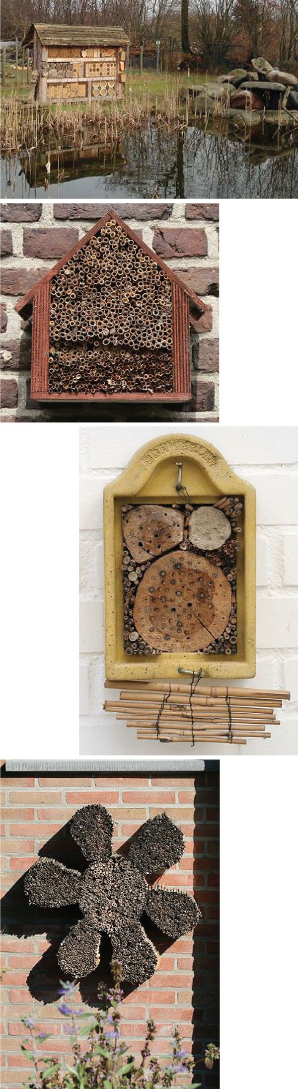 best 25 wood boring bees ideas on pinterest bee traps wood bee