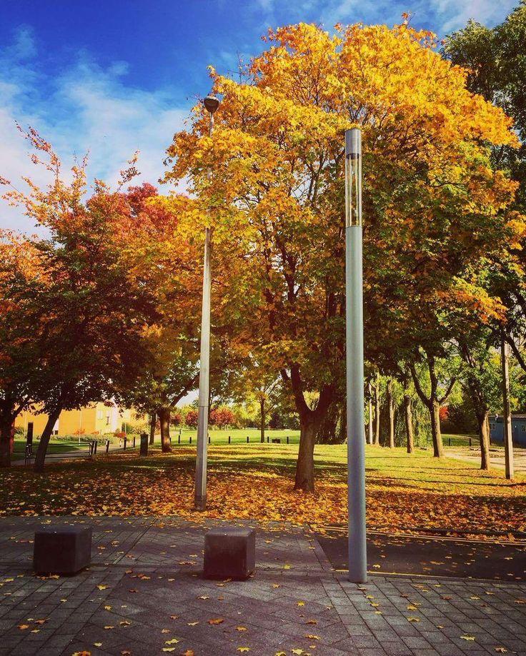 Harrow campus @Autumn