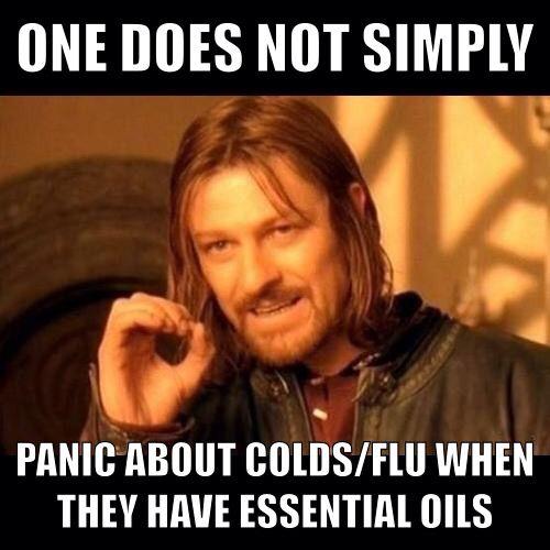 6f11dfb52b76de4fcbc04d09c12e23f0 cool quotes vaping 16 best funny essential oil memes images on pinterest young,Doterra Meme
