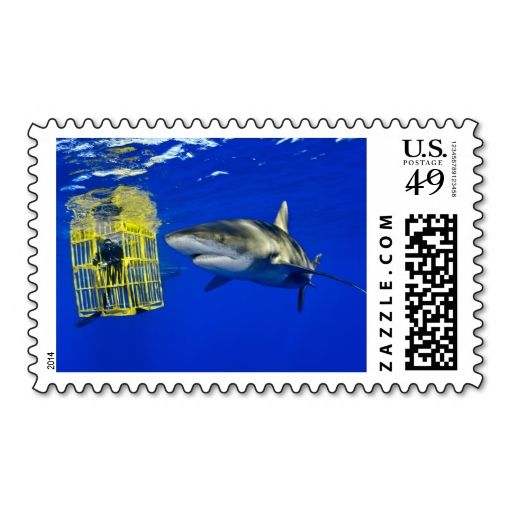 how many stamps for a letter 309 best national geographic postage stamps images on 1281