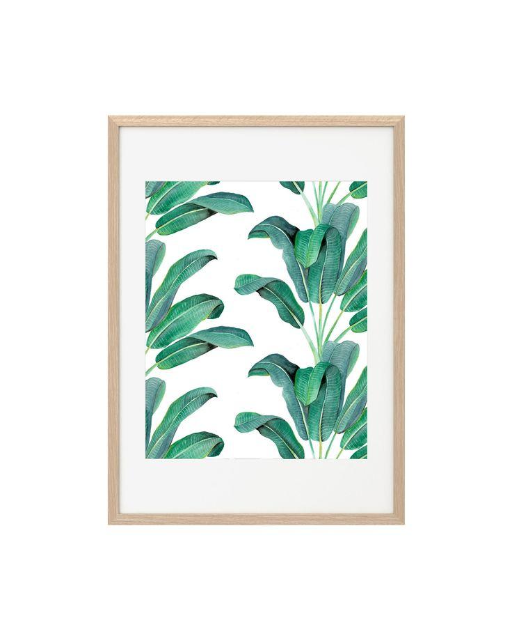 cd_print_banana_palms_white.jpg