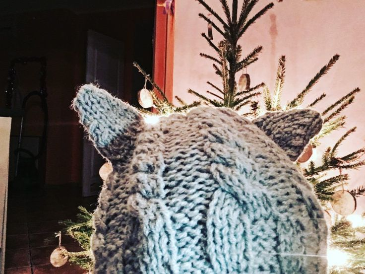 KOCIA CZAPKA [KNITTING] KITTY CAT HAT KNITTING