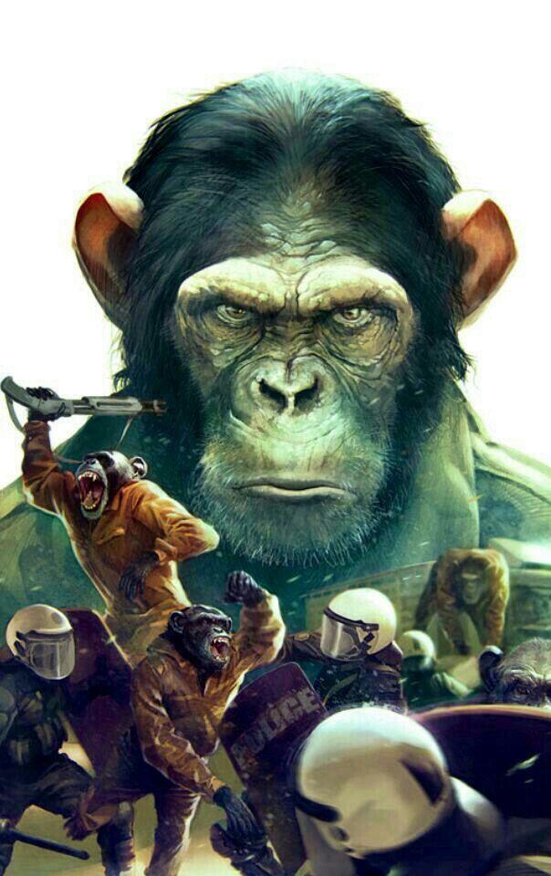 Rise Of The Planet Of The Apes Planet Of The Apes Movie Art Minimal Movie Posters