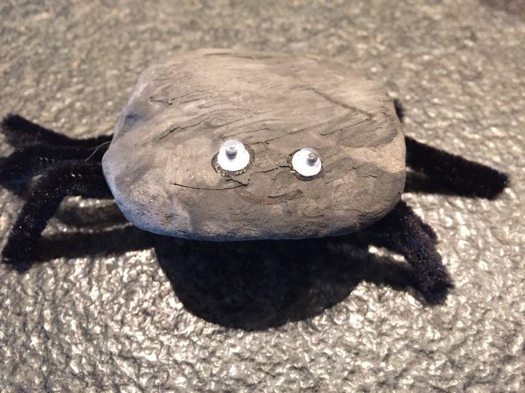 Een steen zwart geverfd, pijpenragers aan de onderkant gelijmd als poten. Wiebelogen erop en de spin is af!