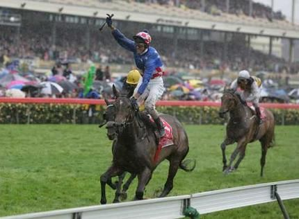 makybe diva, horse - Google Search