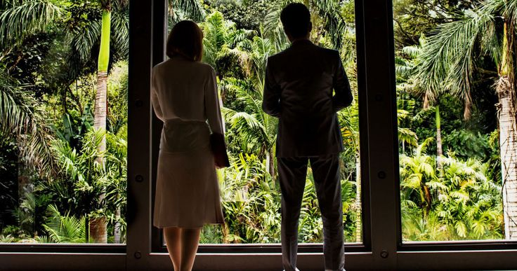 'Jurassic World' Photo Offers a View Into the Park -- Bryce Dallas Howard and Irrfan Khan take a moment out from the terror to admire the lush greenery of 'Jurassic World' in the latest photo. -- http://www.movieweb.com/jurassic-world-photo-bryce-dallas-howard