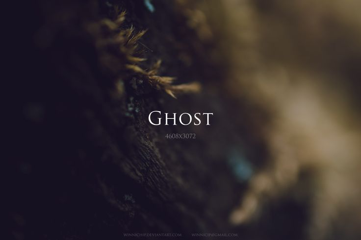 Ghost by winnichip.deviantart.com on @deviantART