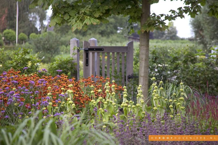 Tuin ideeën De Rooy Hoveniers landelijke tuin boerderij tuin bloeiende border Dussen