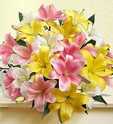 Birthday Flowers   Birthday Flower Delivery   1-800-FLOWERS.COM